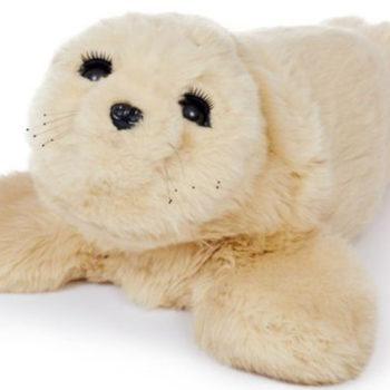 Yorkie-Seal